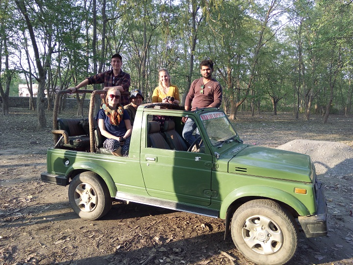 rajaji-national-park-safari