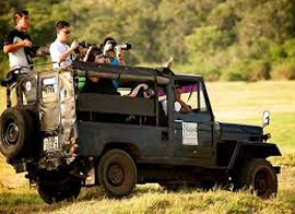 jeep-safari-services