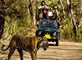 haridwar-rishikesh-with-corbett-tour