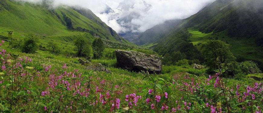 valley-of-flowers-trekking-route